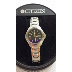 WW#07 ladies two tone Stainless Citizen Watch Day/Date  $80.00