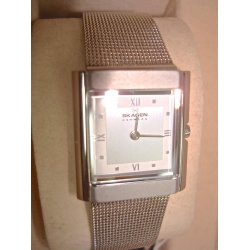 WW#22 LADIES STAINLESS STEEL SKAGEN DENMARK $150.00